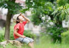 夏の暑さ対策について